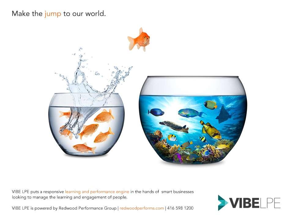 vibe_ads_01